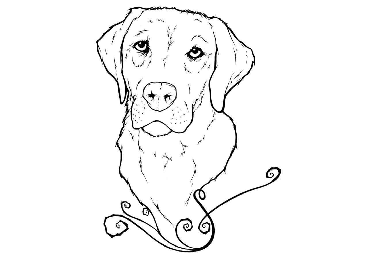 Labrador Face Coloring Page