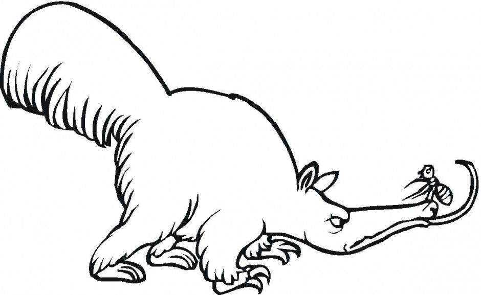 Mad Anteater Coloring Page