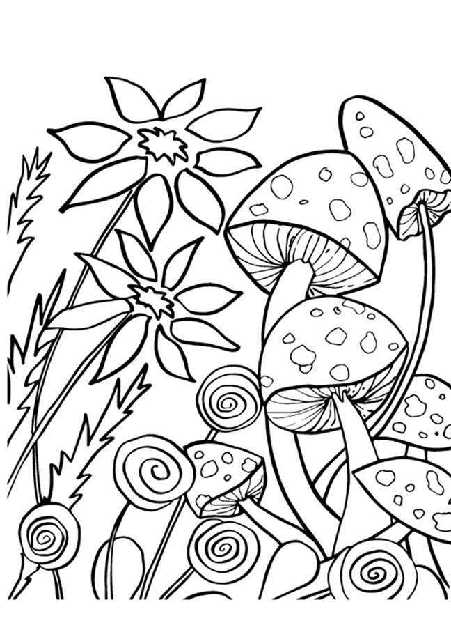 Mushrooms And Flowers Coloring Pages