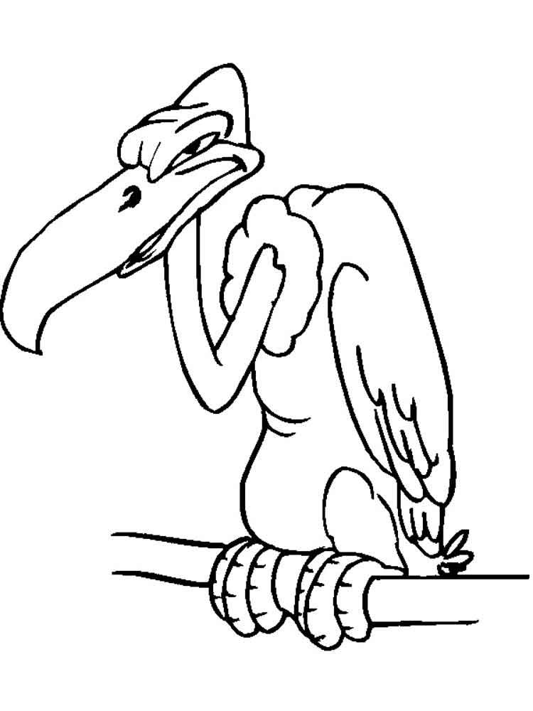 Angry Vulture Coloring Pages