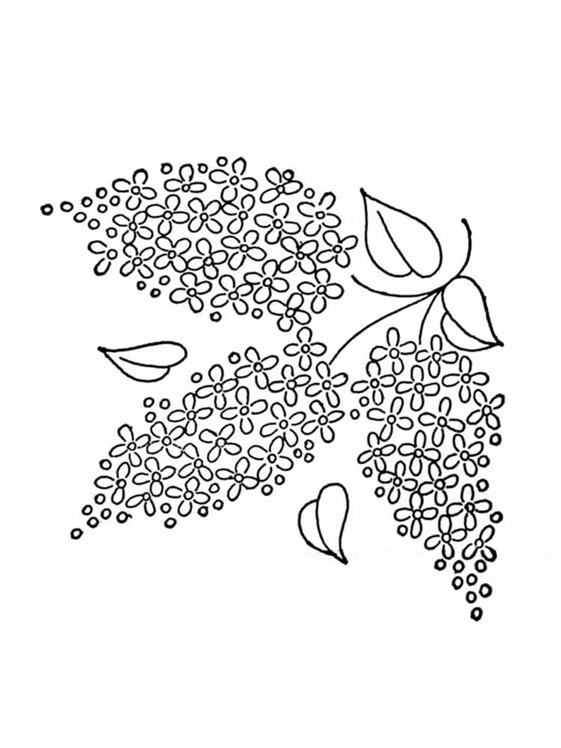 Easy Lilac Coloring Pages