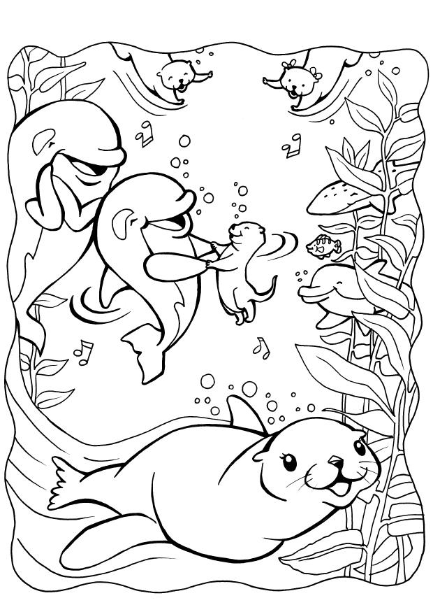 Fun Seal Coloring Pages