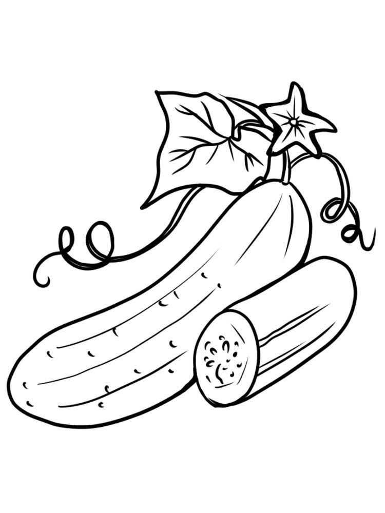 Pretty Cucumber Coloring Pages