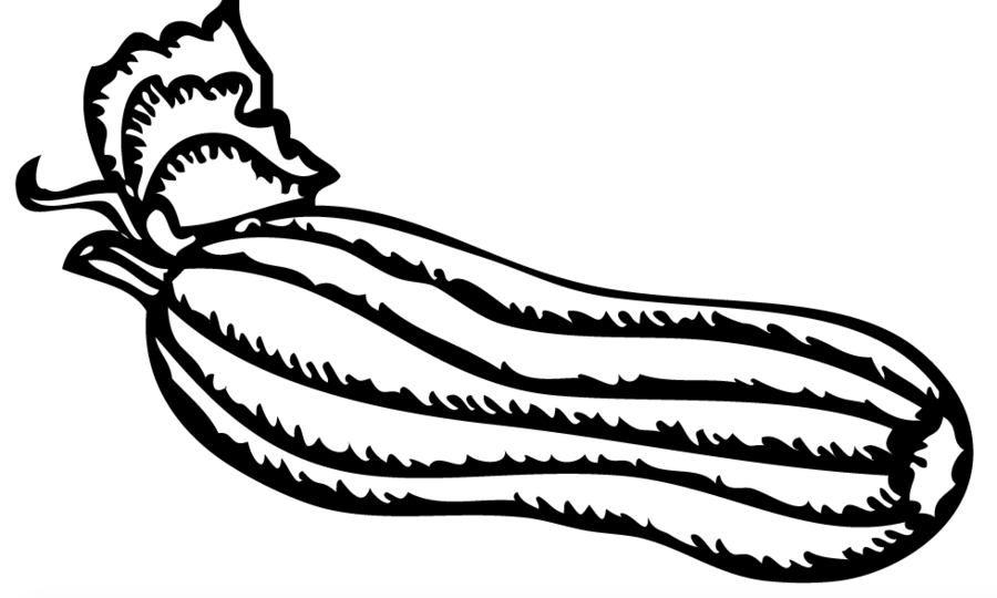 Zucchini Coloring Pages