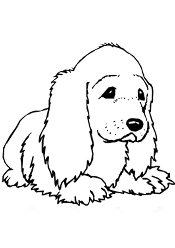 Cute Cocker Spaniel Coloring Pages