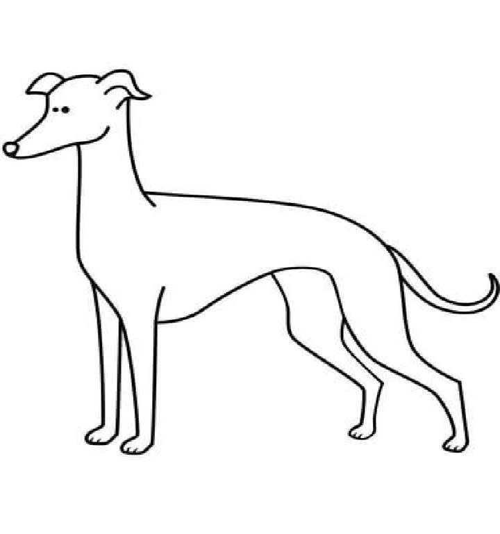 Easy Greyhound Coloring Pages