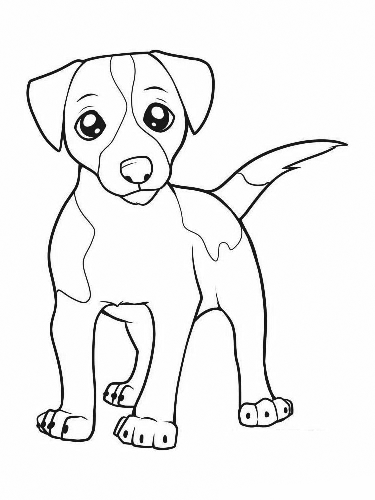 Adorable Jack Russell Coloring Page