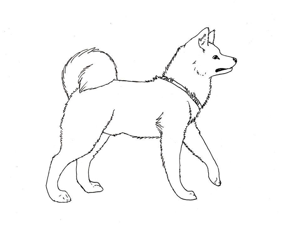 Akita Dog Coloring Pages