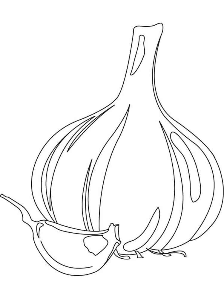 Bulb And Clove Of Garlic Coloring Page
