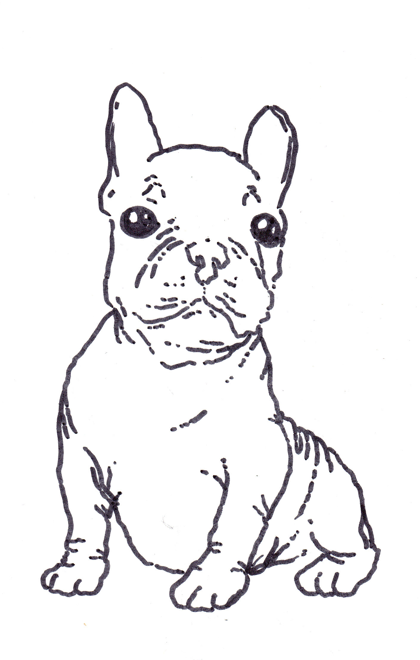 Cute French Bulldog Baby Coloring Page