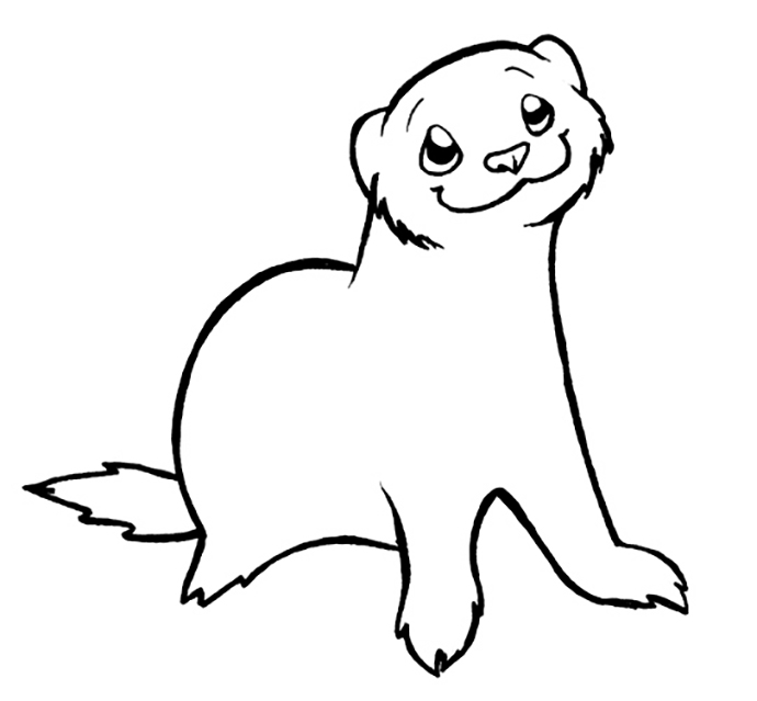 Cute Smiliing Ferret Coloring Pages