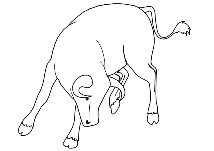 Easy Bull Coloring Page