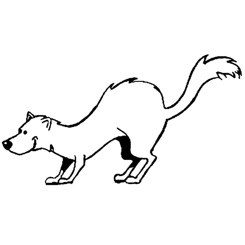 Ferret Playing Coloring Pages