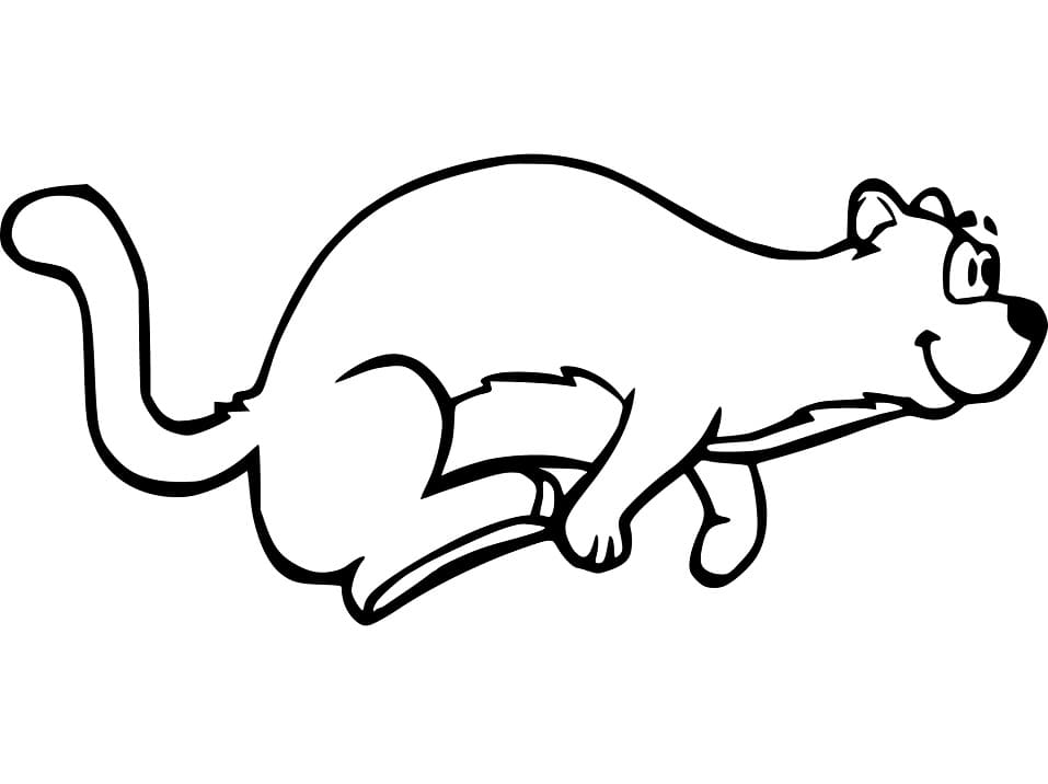 Ferret Running Coloring Pages