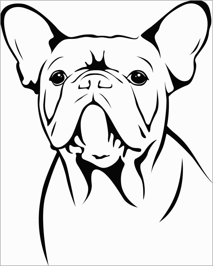 French Bulldog Face Coloring Page