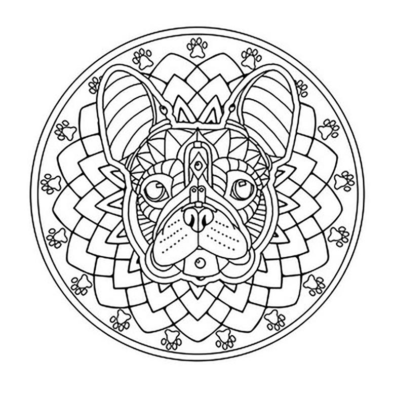 French Bulldog Mandala Coloring Page