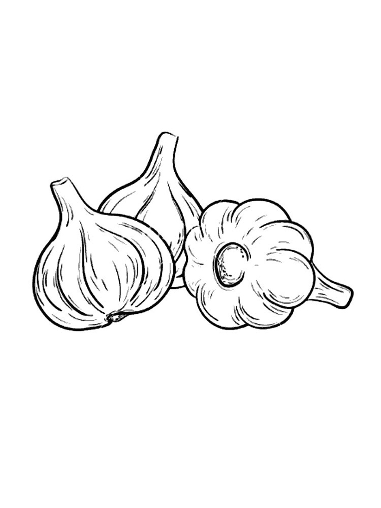 Garlic Coloring Pages