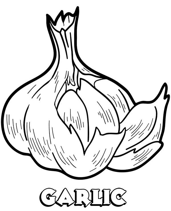 Garlic Coloring Sheet