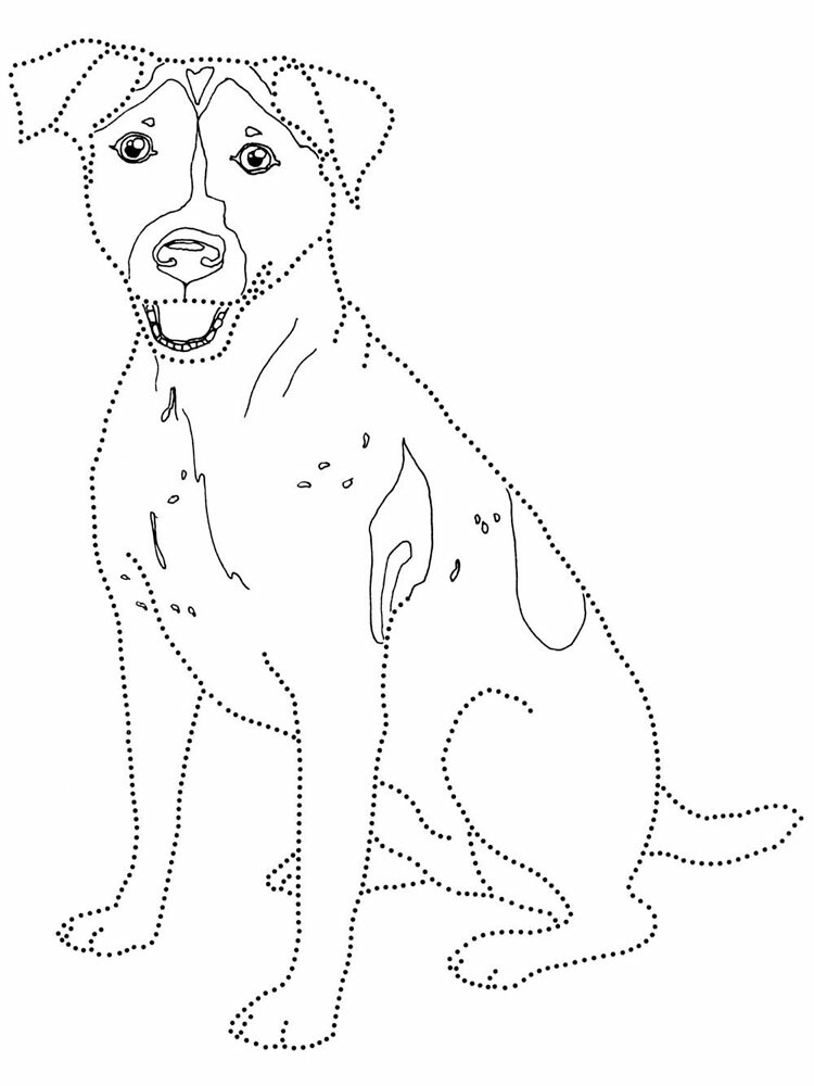 Jack Russel Terrier Coloring Page