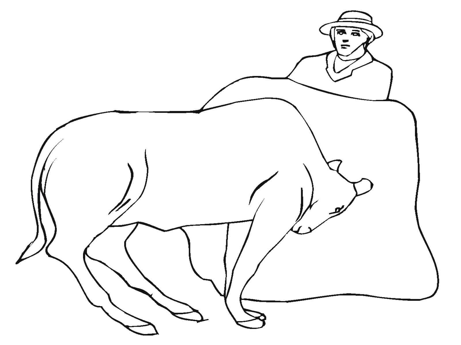 Matador With Bull Coloring Page