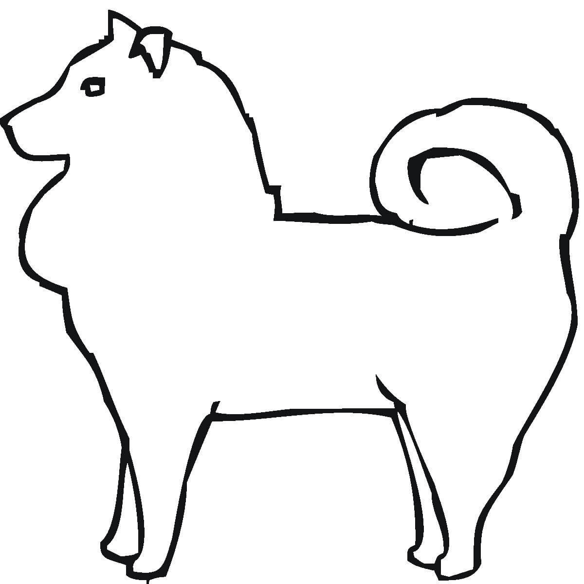 Pomeranian Shape Coloring Page