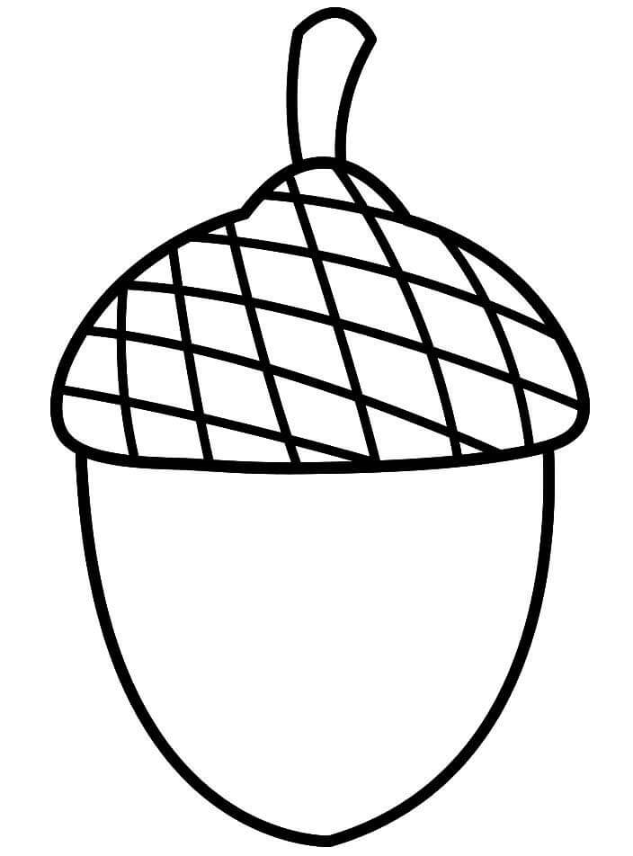 Printable Acorn Coloring Pages