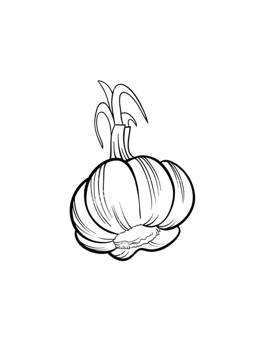 Printable Garlic Coloring Pages