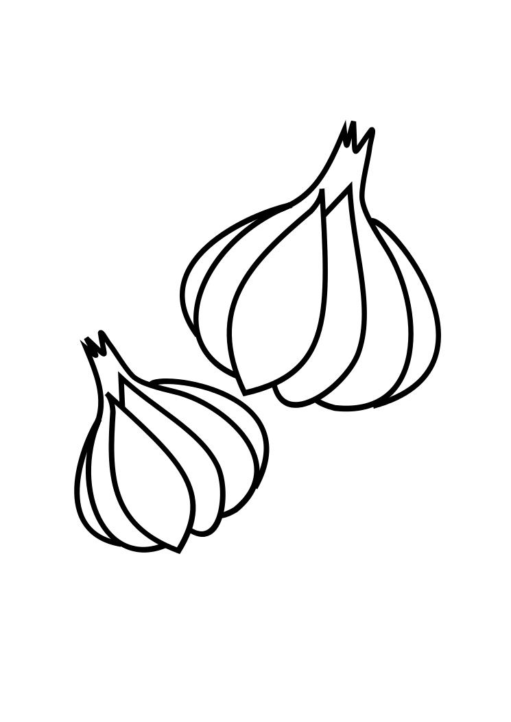 Two Garlic Coloring Page